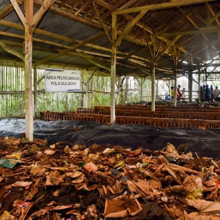 Sebelum diolah menjadi Briket Bio-Coal sampah yang berasal dari eceng gondok dan sampah rumah tangga harus melalui proses peuyeumisasi yang ada di PLTBm Saguling