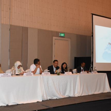 Perwakilan Delegasi pada Diskusi Panel dalam acara Energy Efficiency Training Week 2018